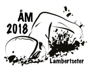 Årsklassemesterskapet 2018